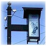 エッチングガラスの街路灯